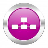 database violet circle chrome web icon isolated