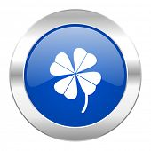 four-leaf clover blue circle chrome web icon isolated