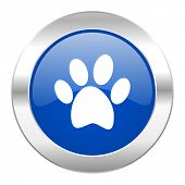 foot blue circle chrome web icon isolated