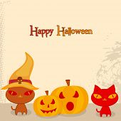 Halloween party celebration with scary cat wearing pilgrim hat and pumpkin on beige background, can