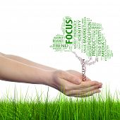 Concept or conceptual tree media word cloud tagcloud in man or woman hand isolated on white grass ba