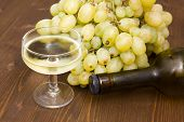 Glass of wine with grapes and bottle