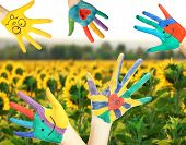 Painted hands on sunflower field background