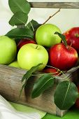 Ripe apples in crate on bright background