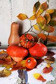 Pumpkins and leaves on old board on wall background