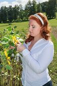 Obese redhead woman in a sunflower field.