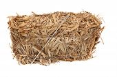 picture of haystack  - Needle in a haystack in front of white background - JPG