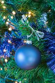 Blue christmas ball hanging in tree