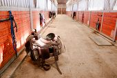 Saddle Center Path Horse Paddack Equestrian Riders Stable