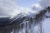 Rosa Khutor Alpine Ski Resort