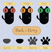Black/ebony Color Cat.