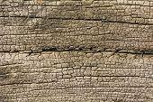 Crack Texture