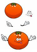 Orange fruit with glossy peel cartoon character