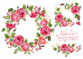Set Of Different Red, Pink Flowers, Frame, Decorative Corners For Design.