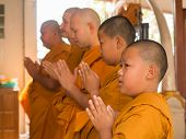Yasothon, Thailand - 2/21/2015 : 5 Unidentified Asian young boys become a monk