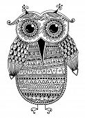 image of owls  - black and white original ethnic owl ink drawing - JPG