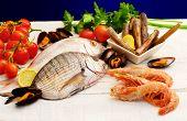 Raw Fish And Mollusk Selection