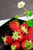 Strawberry Fruits Over Black Plate