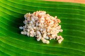 picture of fire ant  - Red ant eggs on banana leaf stock photo - JPG