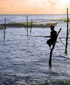 Stilt Fisherman 3