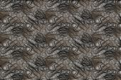foto of plexus  - Abstract background with texture fractal plexus gray tone - JPG