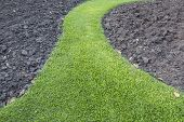 Green Grass Path With Soil Background