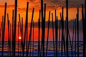 Digital Painting Of Looking Through Beach Umbrella Poles At Sunset