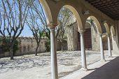pic of carthusian  - Cartuja monastery courtyard Jerez de la Frontera C - JPG