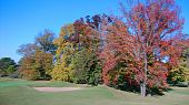 Autumm at the links