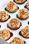 Boxed Caramel Cupcakes Set