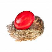 red easter egg in a bird nest