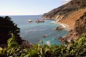 Постер, плакат: Julia Pfeiffer Burns State Park