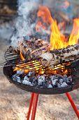 Barbacue Fire
