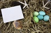 Easter Egg Note Card
