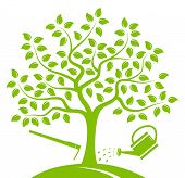 picture of hoe  - vector tree with hoe and watering can isolated on white background - JPG
