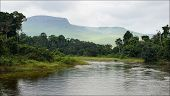 image of proceed  - Small river in jungle - JPG