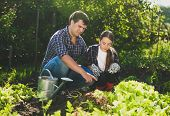 foto of horticulture  - Young man sitting at garden with daughter and teaching her horticulture - JPG