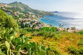 stock photo of greek  - Cactuses and bay with typical Greek houses on the coast - JPG