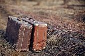 picture of old suitcase  - Two old shabby suitcases stand forgotten on the road in a faded grass - JPG