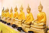 Row of golden Buddha in Ayutthaya province, Thailand.