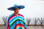 Handsome Mexican Man Charro Hat Serape Agave