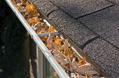 stock photo of gutter  - Home maintenance problem - JPG