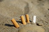 Cigarette butts in the sand