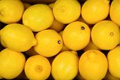 A Lot Of Juicy Colorful Lemons In The Box. Lemons Background. poster