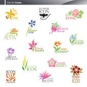 image of bird paradise  - Set of beautiful colorful floral icons for your cool design - JPG