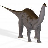 stock photo of apatosaurus  - Brontosaurus with clipping path ancient dinosaur over white - JPG