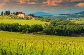 Typical Tuscany Stone House With Spectacular Vineyard In Chianti Region, Tuscany, Italy, Europe poster