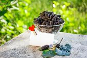Juicy Summer Berries In A Glass. Black Delicious Juicy Mulberry On The Background Of The Garden. Cop poster