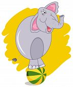 Circus Elephant Balancing On A Colorful Ball On A White Background. Cartoon Elephant. Cute Little El poster