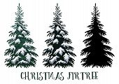 Christmas Fir Tree, Green With White Snow And Black Silhouette Isolated On White Backgrounds. Vector poster